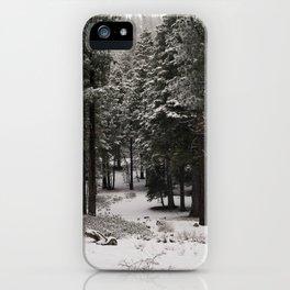Carol Highsmith - Snow Covered Trees iPhone Case