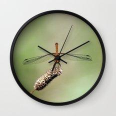 Autumn Meadowhawk Dragonfly Wall Clock