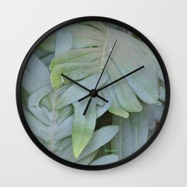 TEXTURES -- Ferns Enfolded Wall Clock
