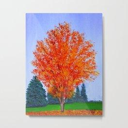Fall tree in ND Metal Print