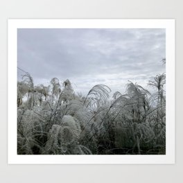 Wisps in the wind Art Print