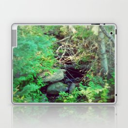 Stream of Living Water Laptop & iPad Skin