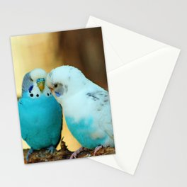 Lovely Pair Of Budgies Stationery Cards