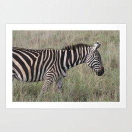 Striped Pyjamas Art Print