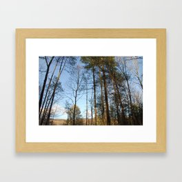 Wind Through The Trees Framed Art Print