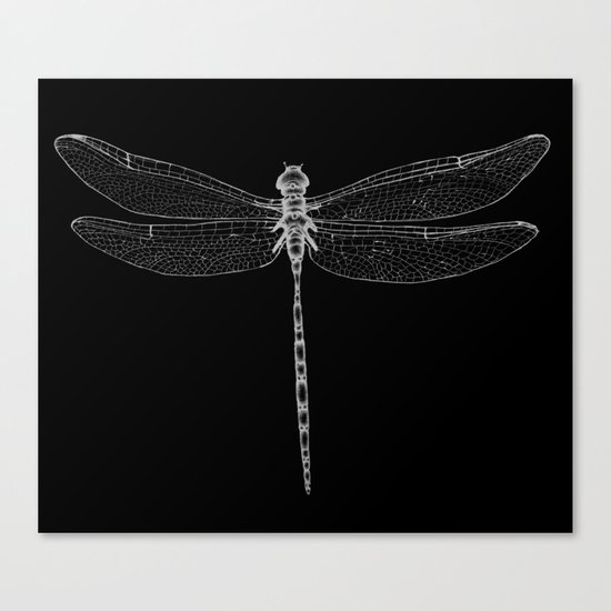 Night Flyer Canvas Print