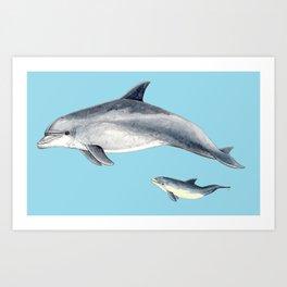 Blue Bottlenose dolphin Art Print