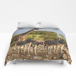 Animal Kingdom 2 Comforters