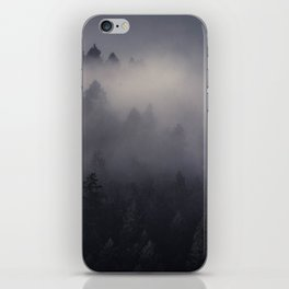 Eagle Mist iPhone Skin
