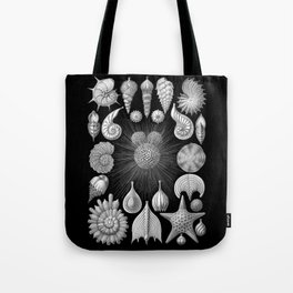 Sea Shells and Starfish (Thalamophora) by Ernst Haeckel Tote Bag