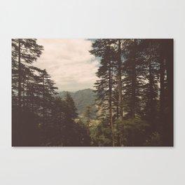 Naldehra View Canvas Print