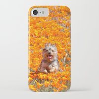 minnie iPhone & iPod Cases featuring Yorkie in Poppies by Sue Liberto Photography
