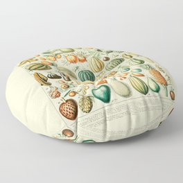 Autumn Harvest // Fruits by Adolphe Millot 19th Century Pumpkins Science Textbook Artwork Floor Pillow