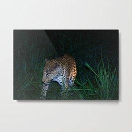 Leopard Night Metal Print