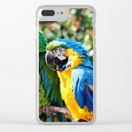 Macaw Parrots Clear iPhone Case