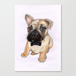 Frenchie With Bowtie Canvas Print