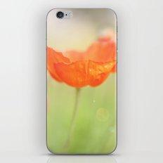 Spring Has Sprung  iPhone & iPod Skin