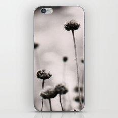 3, 2, 1 iPhone & iPod Skin