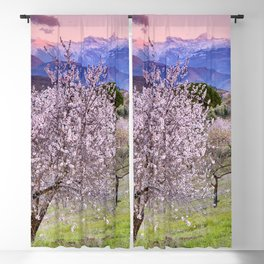 Mountain almond tree. Flowering time. Sierra Nevada National park at sunset. Blackout Curtain