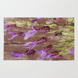 French Lavender (Lavandula stoechas) Rug
