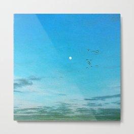 Moonbirds Metal Print