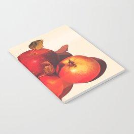 Apple Season Notebook