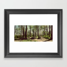 BMX Track in the Woods Framed Art Print