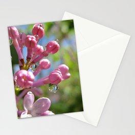 p i n k Stationery Cards