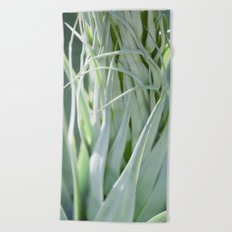 Smooth Cactus Core Beach Towel