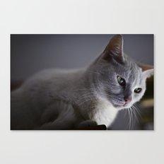 Lua Canvas Print