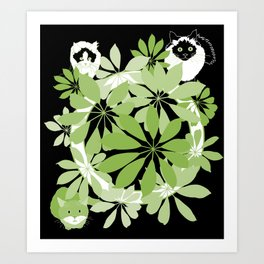 Black, white and green cats Art Print