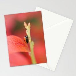 Ladybug On An Autumn Leaf Stationery Cards