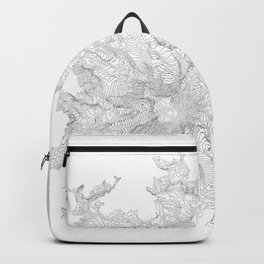 Mount Rainier, WA Contour Map In White Backpack
