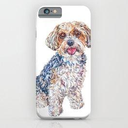 Maverick the Biewer Yorkshire Terrier iPhone Case