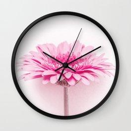 Pink gerbera Wall Clock