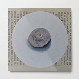 Seashell Admiration Metal Print