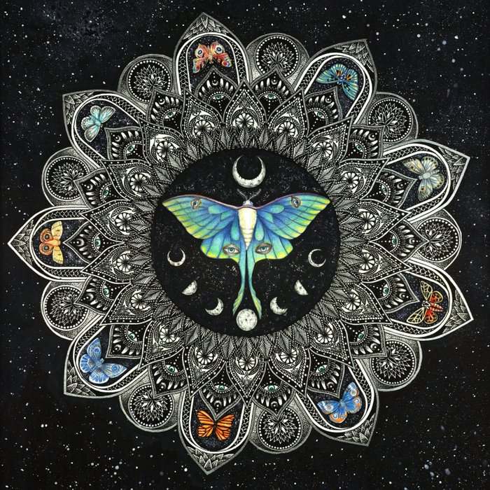 Lunar Moth Mandala with Background Comforters