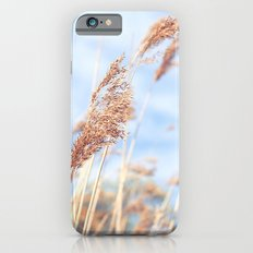 An Irish Summer Slim Case iPhone 6s