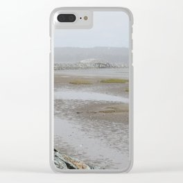 Salt Water Marsh Snow Squall Clear iPhone Case
