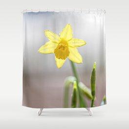 Daffodil V Shower Curtain