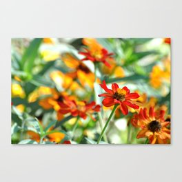 SUMMER VISTA Canvas Print