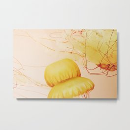 Northeast Pacific Sea Nettle Metal Print