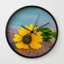 Bloom where you are Planted - LG Wall Clock
