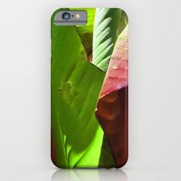 Exquisite Fine Art Lush, Lavish Leaves Macro Photo iPhone Case