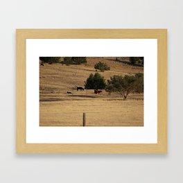 Cows in Utah Pastureland Framed Art Print