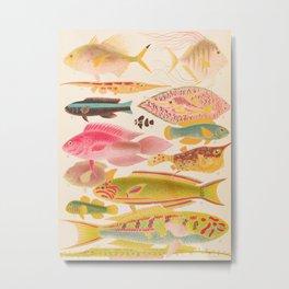 Colorful Tropical Fishes Vintage Sea Life Illustration Metal Print