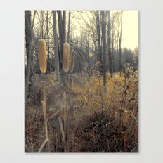 Tails Of Fall Canvas Print
