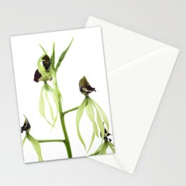 Dancing orchid Pulpito serie 3/5 Stationery Cards