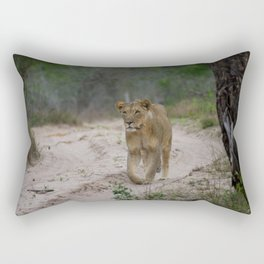 Female Lion at Tembe Elephant Park Rectangular Pillow
