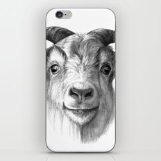 Curious Goat G124 iPhone & iPod Skin